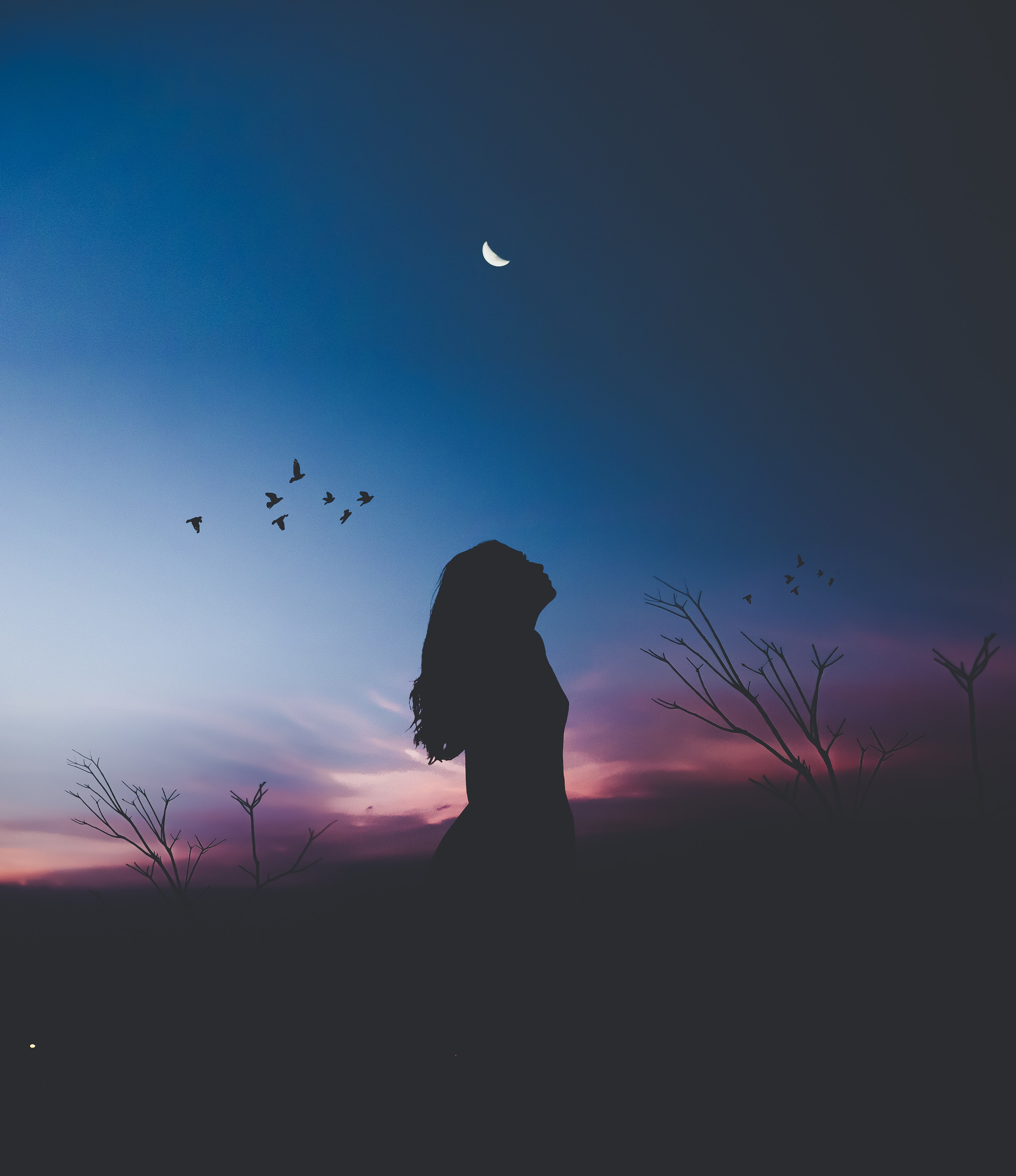 blog-senhorita-deise-liberdade-priscilla-alcantara