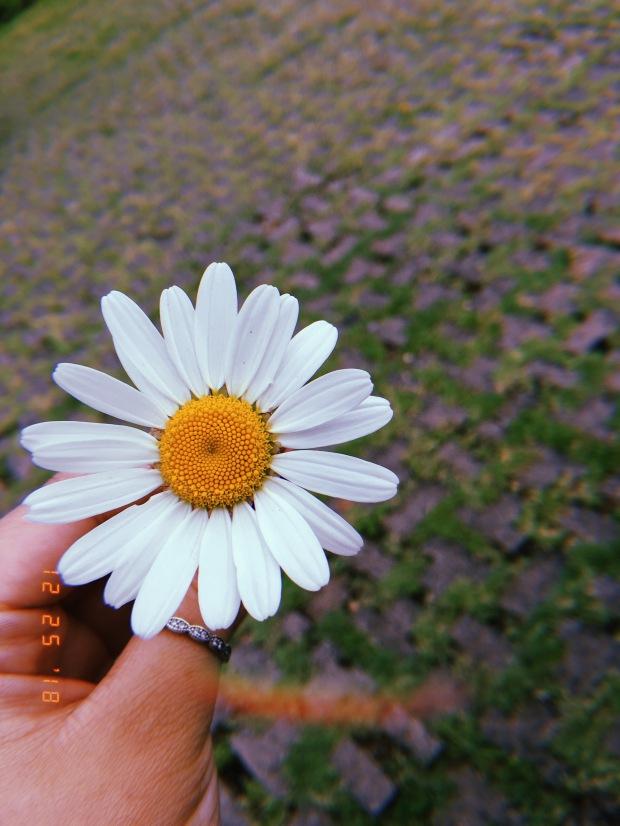 blog-senhorita-deise-diferente-3.JPG