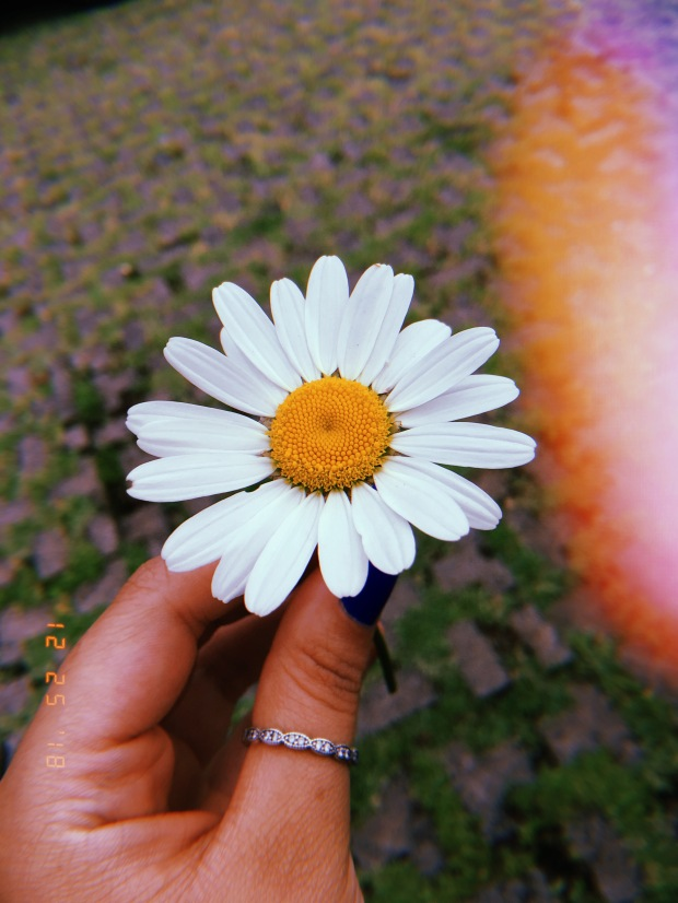 blog-senhorita-deise-diferente