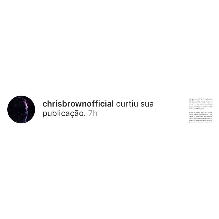 blog-senhorita-deise-retrospectiva-2018-chris-brown